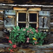 Finestra nr. 1 | disegno colori matite A3 2015 | Collezione Finestre dell'Alto Adige disegnate