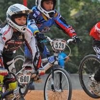 Giacomo Barbato . Gara 6 campionato triveneto 2014 San Giovanni Lupatoto BMX Race